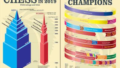 Photo of Infografikák a www.sparkchess.com weboldalról